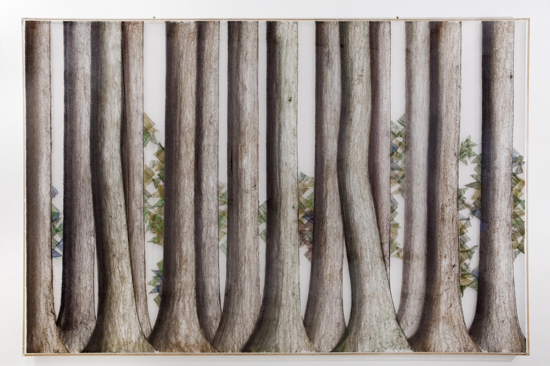 Παύλος (Διονυσόπουλος) Δάσος, 1983 Μικτή τεχνική 200 x 300 εκ. MOMus-Μουσείο Σύγχρονης Τέχνης-Συλλογές Μακεδονικού Μουσείου Σύγχρονης Τέχνης και Κρατικού Μουσείου Σύγχρονης Τέχνης